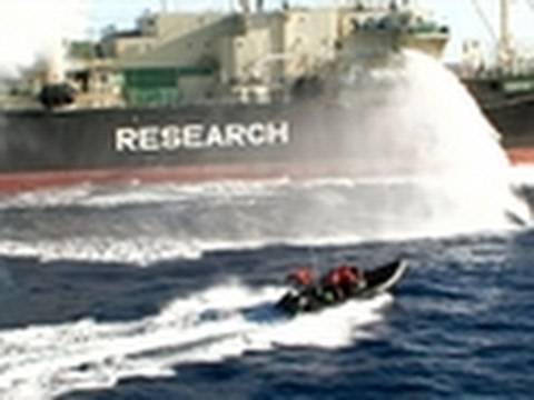 Whale Wars- Paintballing a Whaling Ship
