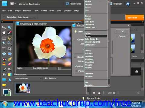 Photoshop Elements 9.0 Tutorial Using Patterns Adobe Training Lesson 9.5