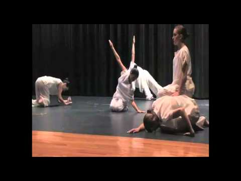 TEDxHISD - High School for Performing And Visual Arts (HSPVA) -- Ode to CAMH