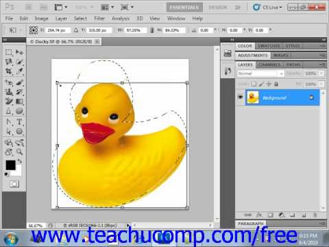 Photoshop CS5 Tutorial The Free Transform Command Adobe Training Lesson 14.5
