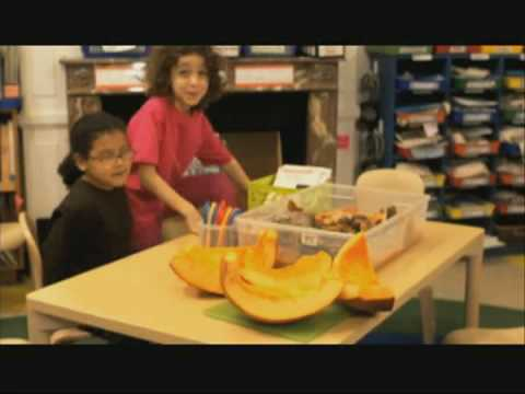 SID THE SCIENCE KID | Decayed pumpkin investigation | PBS KIDS