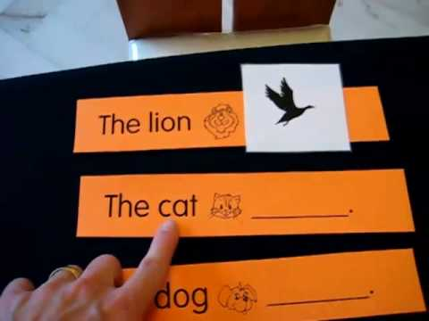 Toddler-Reading. Animals and actions