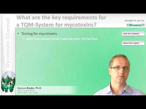 What are the key requirements for a TQM-System for mycotoxins?
