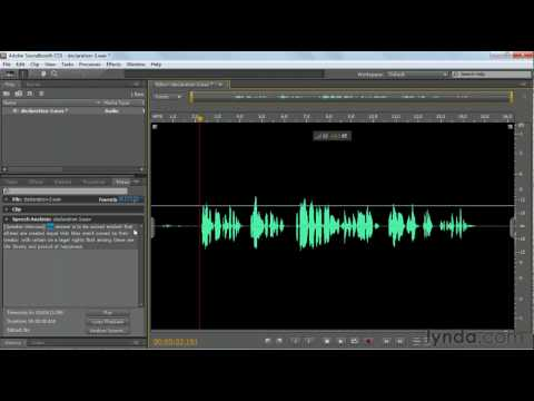 Soundbooth: Converting speech to text | lynda.com tutorial