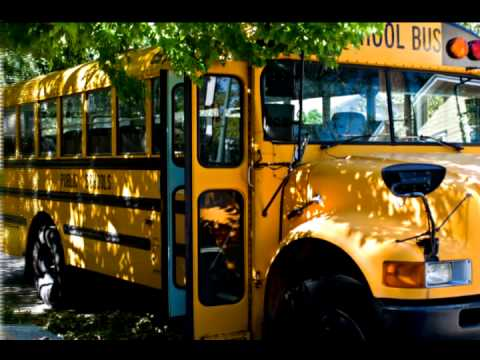 Wheels On The Bus Song - School Songs For Children