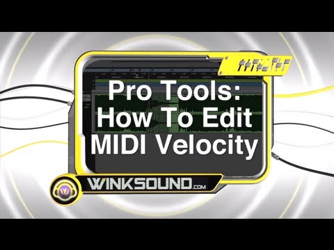 Pro Tools: How To Edit MIDI Velocity | WinkSound