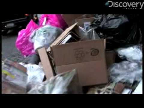 New York City's Trash Brightens Up