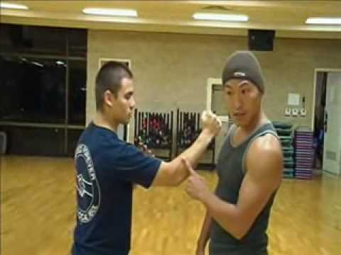 Wing Chun - Why Chi Sau Training is important (basic concept) part 1