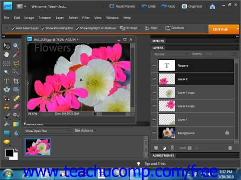 Photoshop Elements 9.0 Tutorial Moving Layer Content with the Move Tool Adobe Training Lesson 10.5