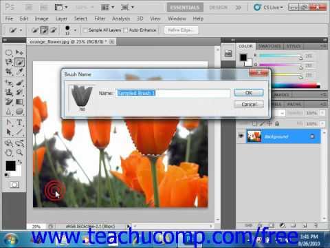 Photoshop CS5 Tutorial Creating Custom Brush Tips by Selection Adobe Training Lesson 6.2