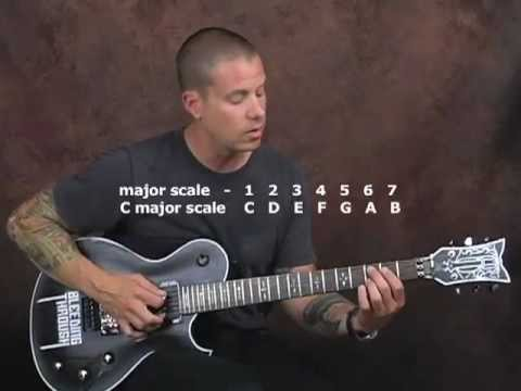 Steve Vai style and techniques guitar lesson tones whammy bar chords scales triads