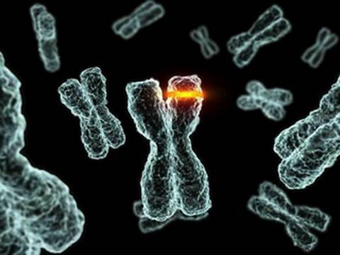 Positive Selection: Is the Human Genome Evolving?
