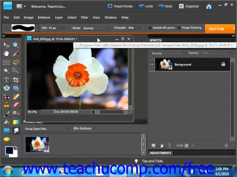 Photoshop Elements 9.0 Tutorial The Smudge Tool Adobe Training Lesson 13.5