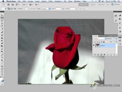 Photoshop CS5 - Selection Tools Part 1