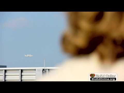Space Shuttle Endeavour's Final Voyage