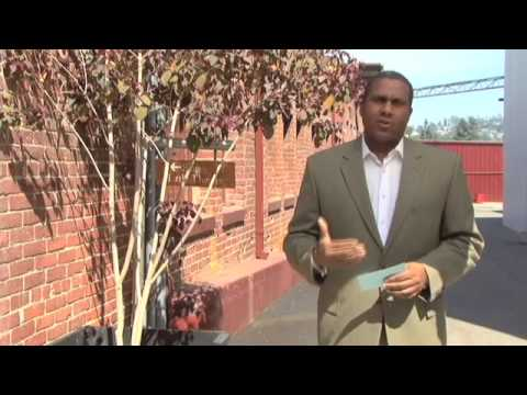 "Tavis Smiley's Video Blog - ""I Have a Dream"" 