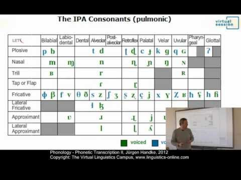 Phonology - Phonetic Transcription II