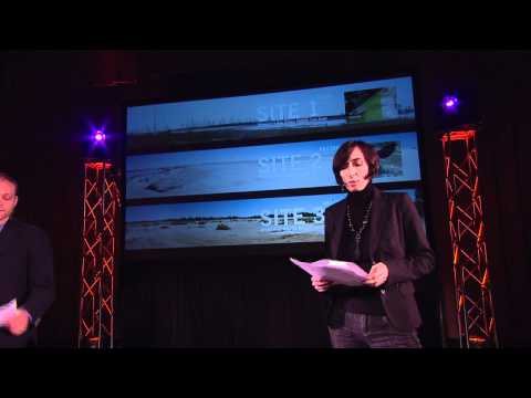 TEDxPittsburgh - Elizabeth Monoian and Robert Ferry - Art and Energy