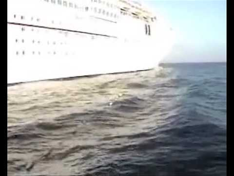 Sonic alarm saves marine mammals from ship strike