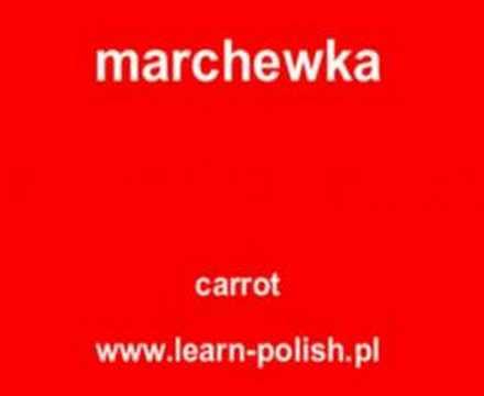 Polish Language Website