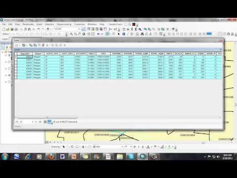 Understanding How Census Names Units