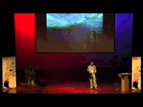 TEDxBKK - Chris Mitchell- How I Fell in Love with the Great White Shark