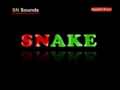 SN Sounds