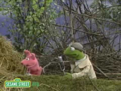 Sesame Street: Kermit News On Three Pigs