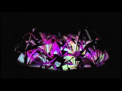 TEDxDanubia 2011 - Battha Gáspár - Inside Out - Fényfestés