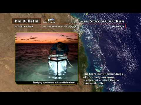 Science Bulletins: Taking Stock of Coral Reefs