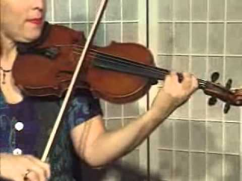 Violin Lesson - How To Play Danman's Print Library # 115