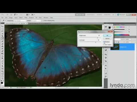 Photoshop CS5: Using the Brightness/Contrast command | lynda.com tutorial