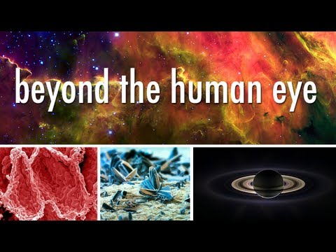 Seeing Beyond the Human Eye | Off Book | PBS