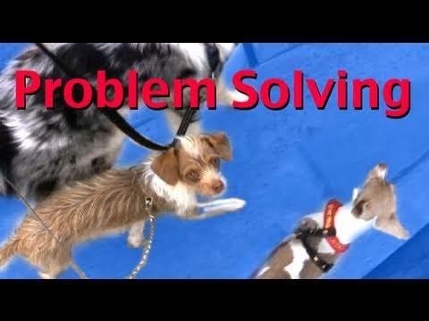 No Pullling! Problem Solving