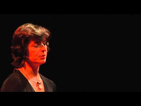 TEDxMidAtlantic 2011 - Danielle Brian - Unifying a Divided Country