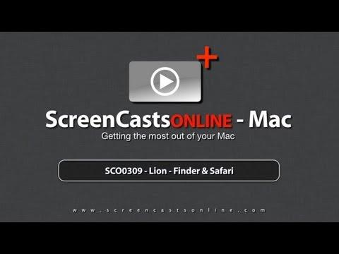 SCO0309 - Lion - Finder & Safari