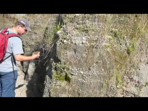 UTAS SET Profile - Dr Nic Jansen - ARC CODES - ore deposits
