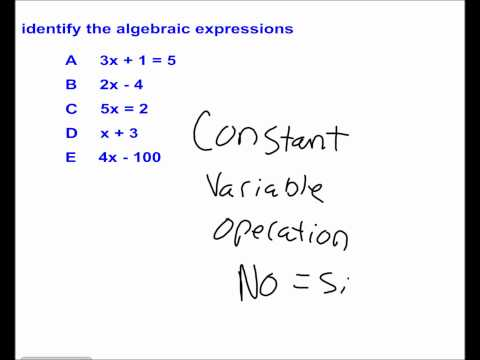 Variables and Expressions #15