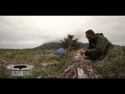 NATURE | Bears of the Last Frontier | Video Diary: Chris at the Campsite | PBS