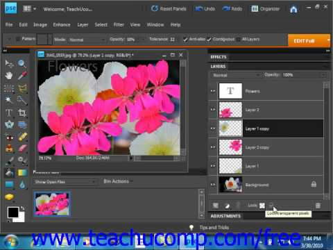 Photoshop Elements 9.0 Tutorial Locking Layers Adobe Training Lesson 10.6