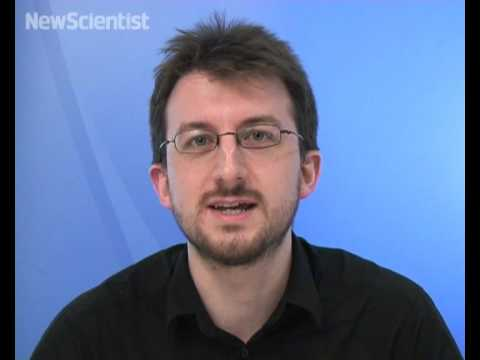 New Scientist video round-up - October 24, 2008