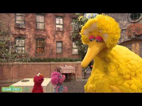 Sesame Street: The Good Birds' Club