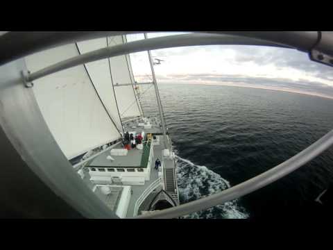 Snippets from the Rainbow Warrior: Bird's Eye View
