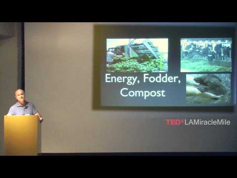 Using Applied Ecology to Manage Nutrients Locally: Jonathan Todd at TEDxLAMiracleMile