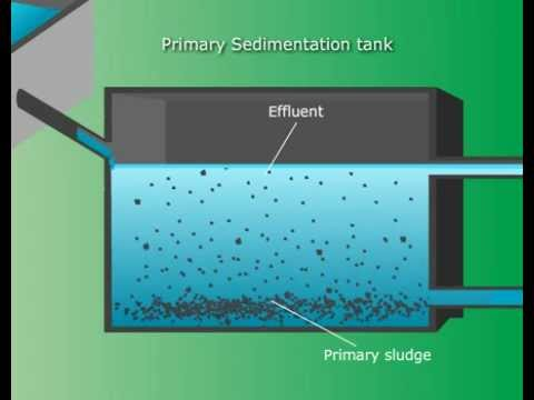 Waste Water Treatment Tutorials Online - Class XII Science (Meritnation.com)