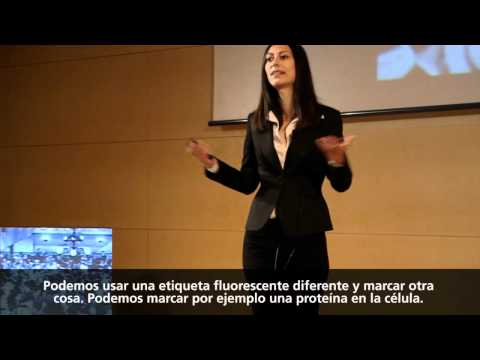 TEDxBarcelona - Melike Lakadamyali - Capturing life's processes with light