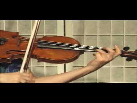 Violin Lesson - Bowing Technique
