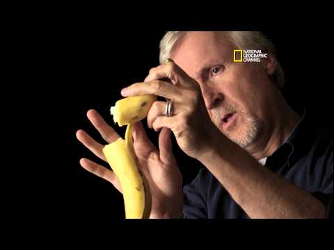 Titanic 100 - The Banana Theory: Cameron On Camera Discussion