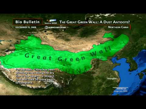 "Science Bulletins: China's ""Great Green Wall""—A Dust Antidote?"
