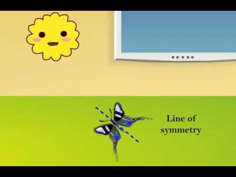 Symmetry using mirror - Class III Maths